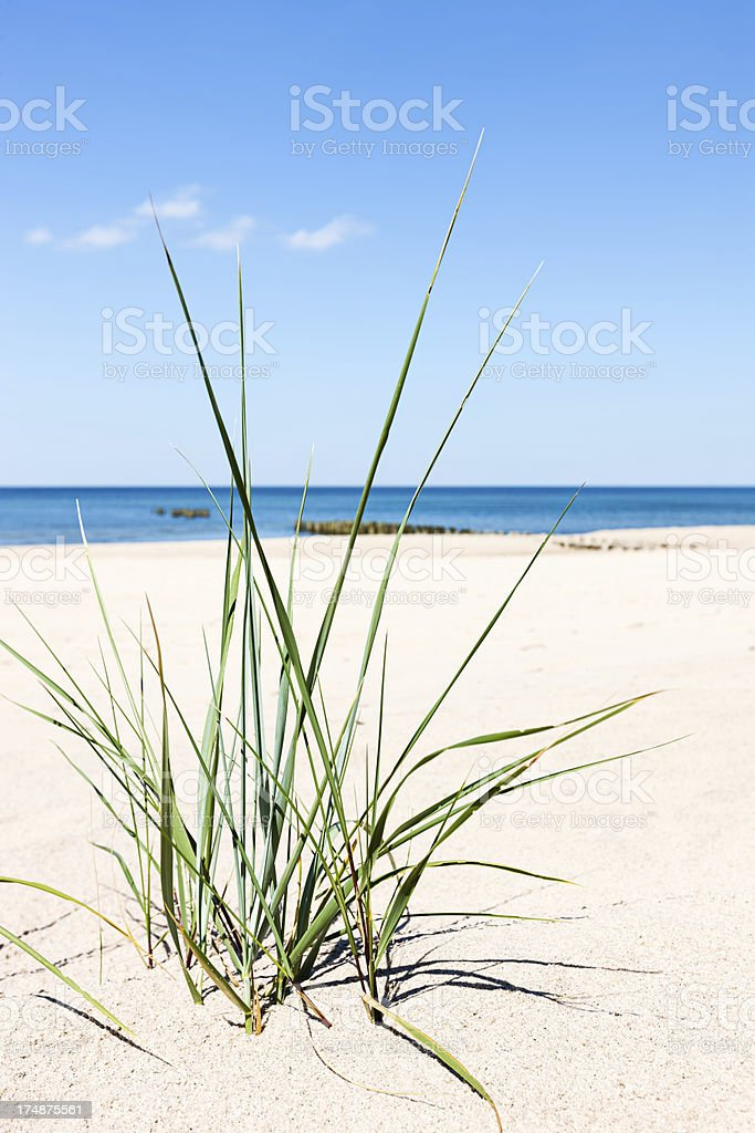 Perfect beach - sand dunes and the sea stock photo