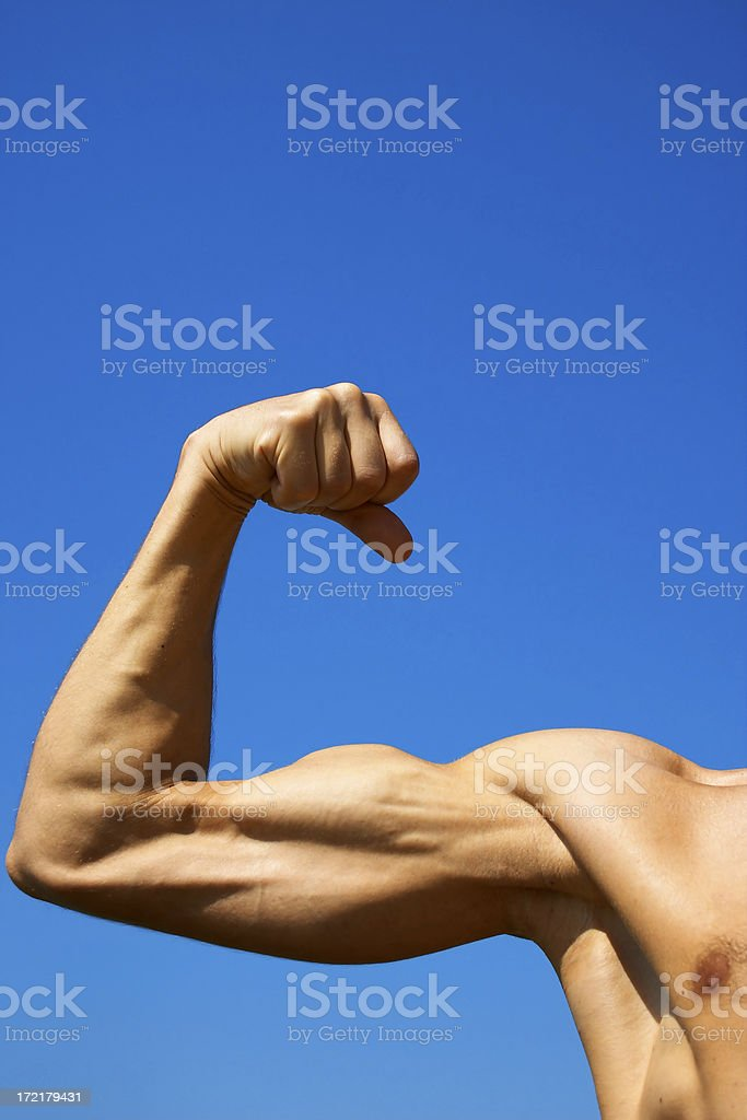 Perfect biceps royalty-free stock photo
