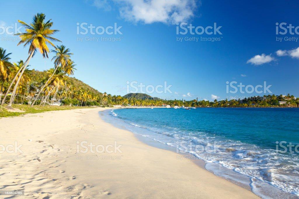 Perfect Caribbean Beach stock photo