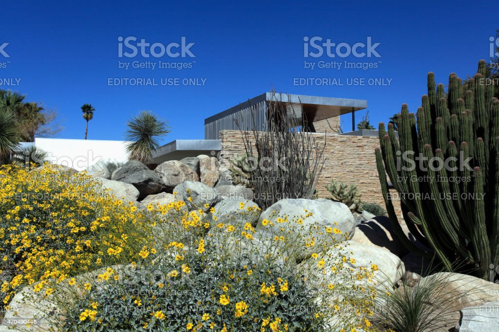 Perfect Desert Modern Landscaping And Home stock photo