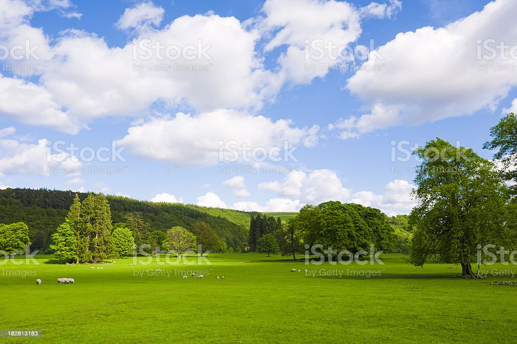 Perfect English Summer Countryside royalty-free stock photo