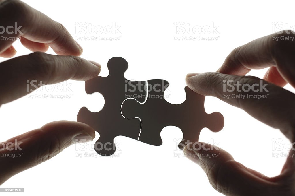 Perfect Fit royalty-free stock photo