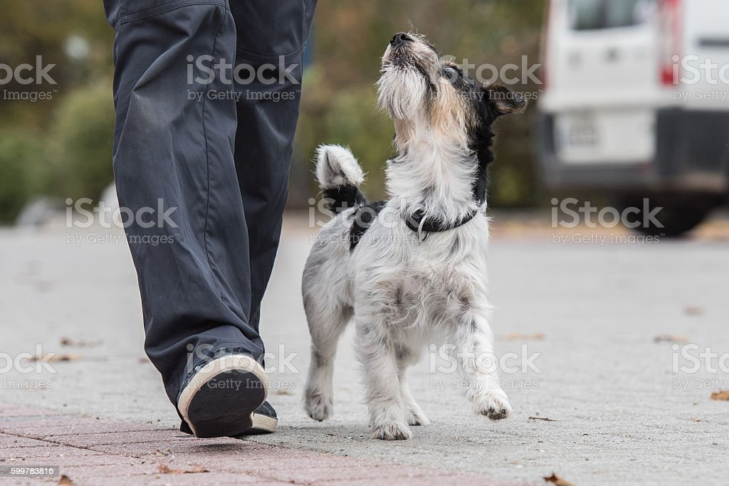 perfect footwork stock photo