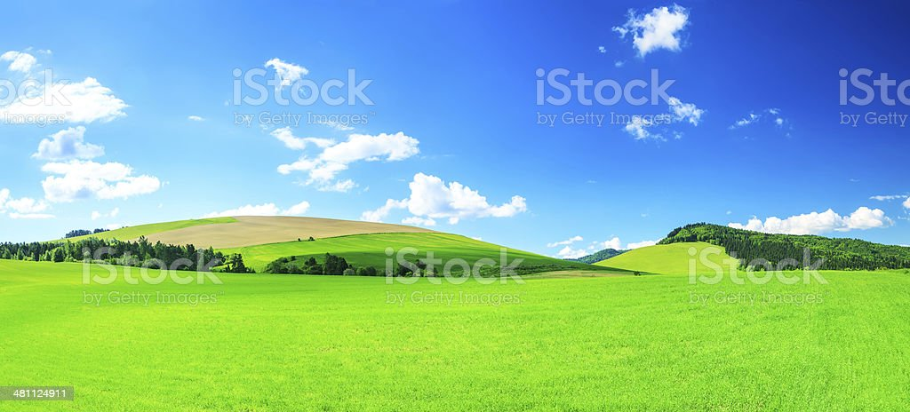 XXXL Perfect Landscape - Green Grass, Field, Meadow royalty-free stock photo