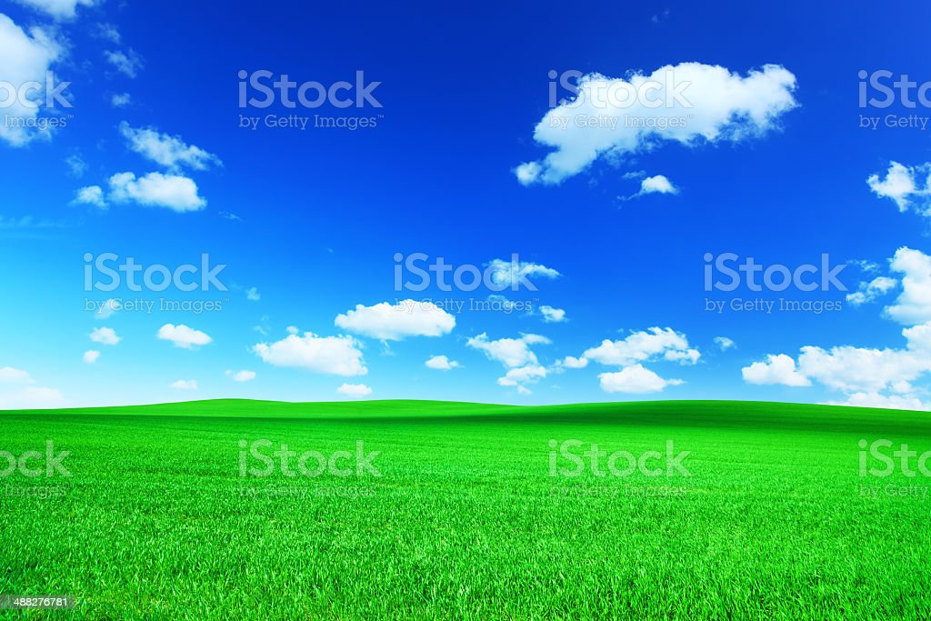 Perfect Landscape - Spring Field and Blue Sky XXXL stock photo