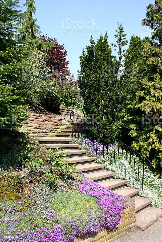 Perfect landscaping royalty-free stock photo