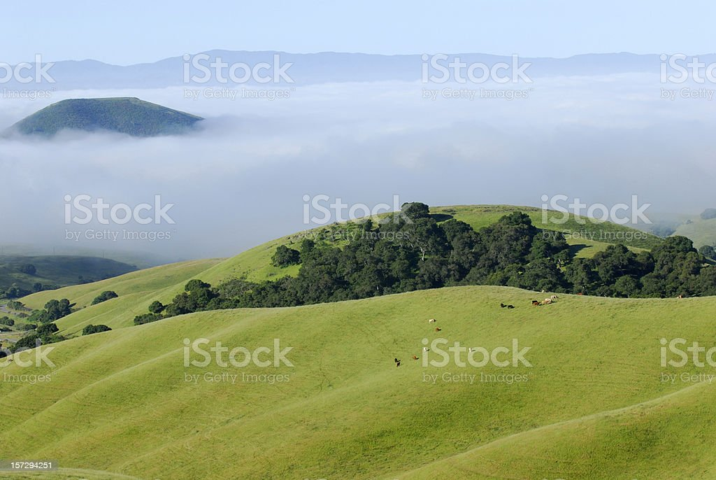 Perfect Pasture Above the Clouds royalty-free stock photo