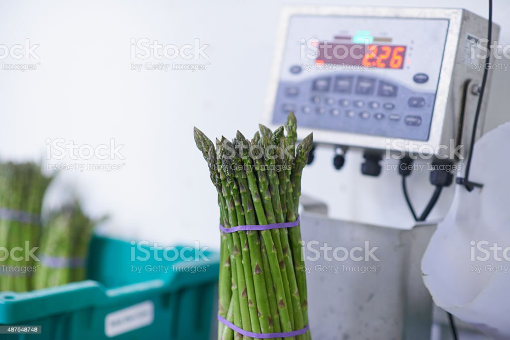 Perfect produce stock photo