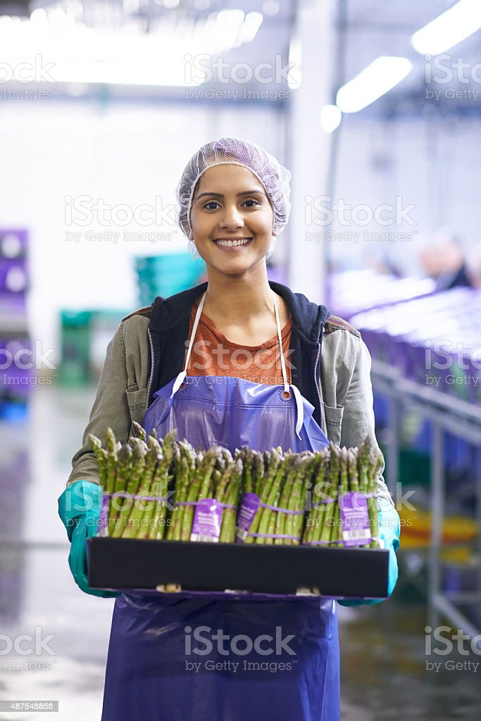 Perfect produce ready to hit the stores stock photo