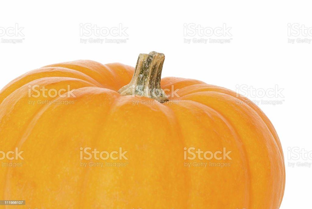 Perfect pumpkin on white stock photo