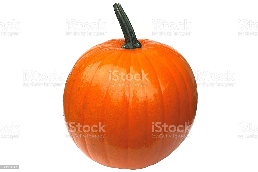 Perfect Pumpkin royalty-free stock photo