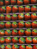 Perfect red strawberries at the fine shop.