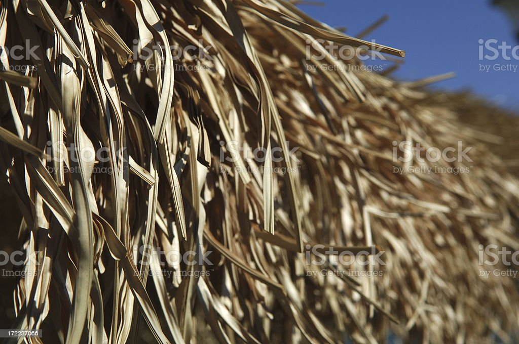 Perfect straw royalty-free stock photo