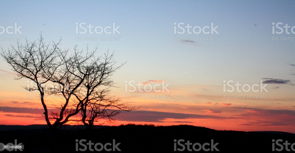 Perfect Sunset Background with Puffy Clouds stock photo