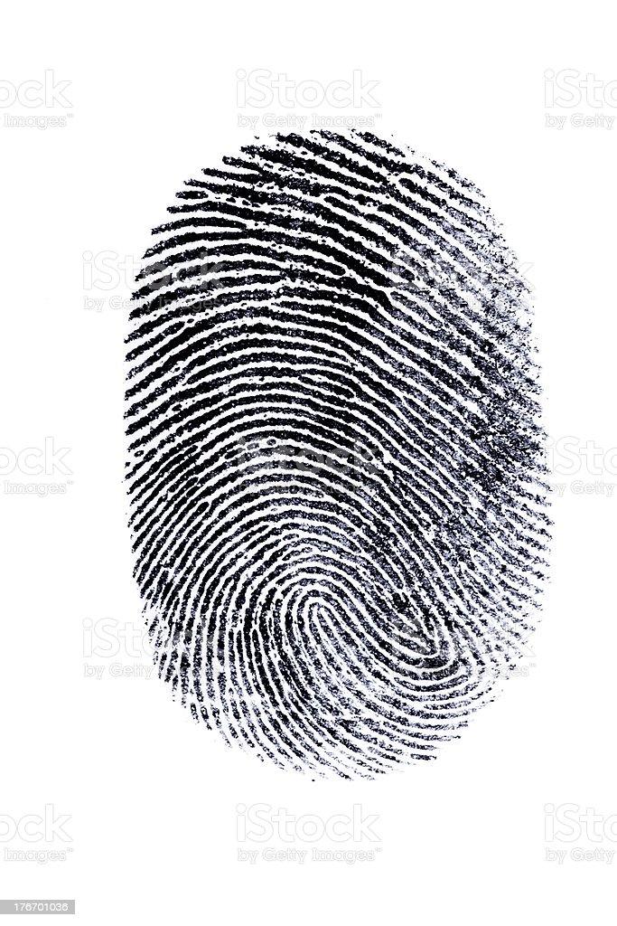 perfect thumb fingerprint stock photo