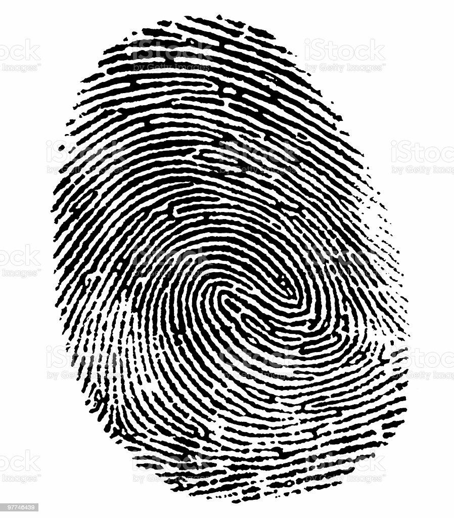 perfect thumb fingerprint royalty-free stock photo