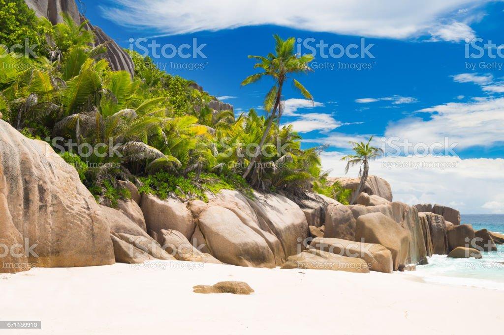 Perfect tropical beach stock photo