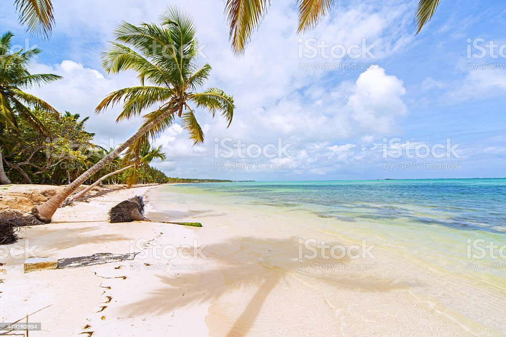 Perfect tropical island paradise beach stock photo