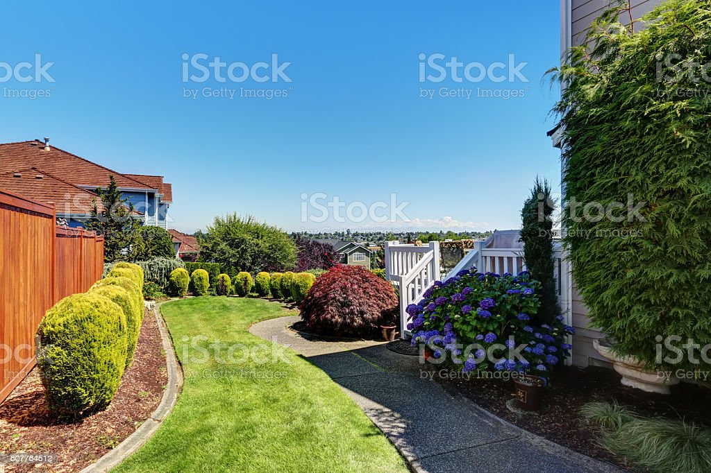 Perfect view of backyard with concrete walkway stock photo