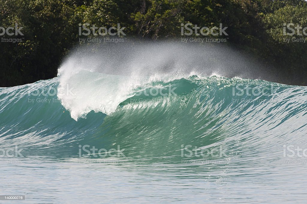 perfect wave breaking in indonesia stock photo