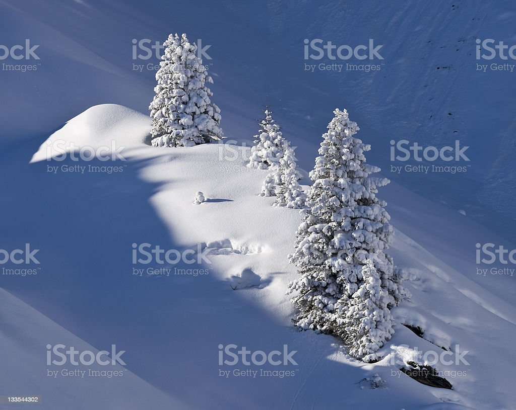 perfect winter day royalty-free stock photo