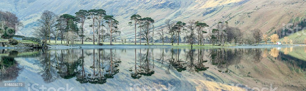 Perfectly Clear Reflections Of Tree's In Water. stock photo