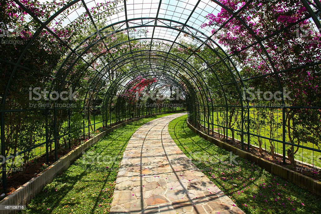 Perfectly Edged Garden stock photo
