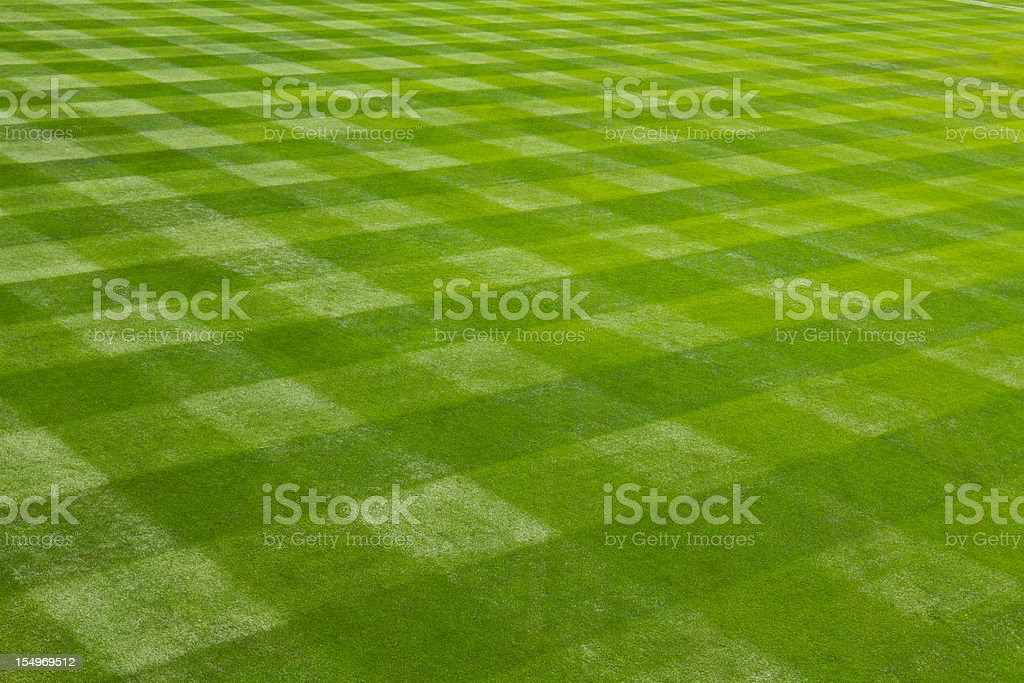 Perfectly mown grass at the ball field. stock photo