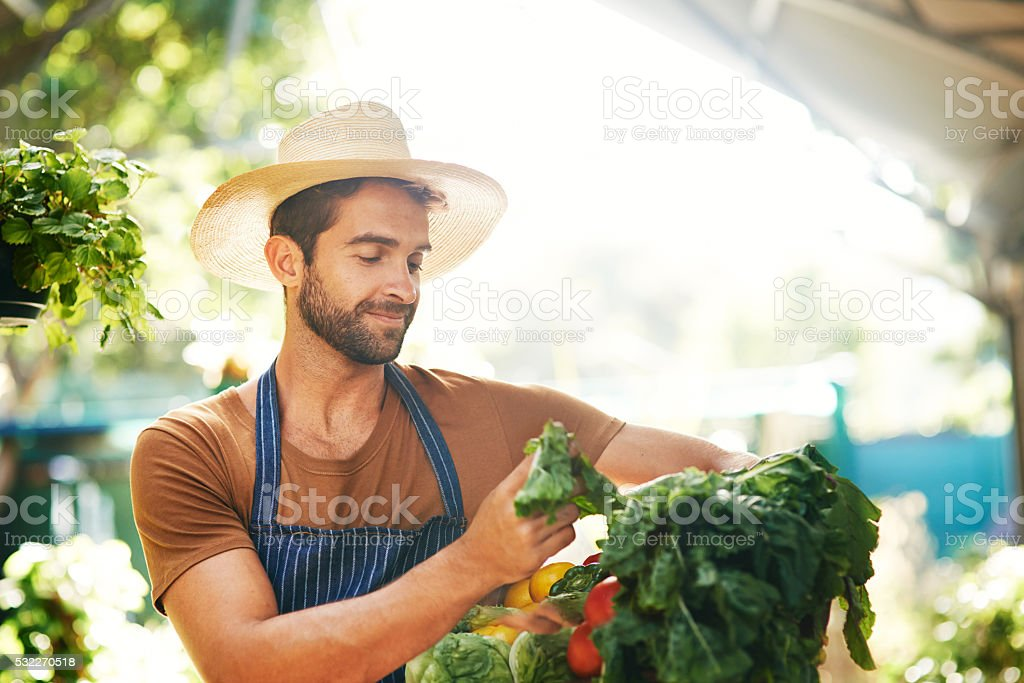 Perfectly ripe stock photo