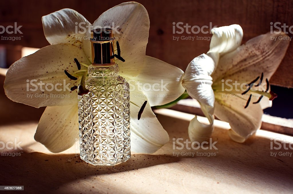Perfume and orchid stock photo
