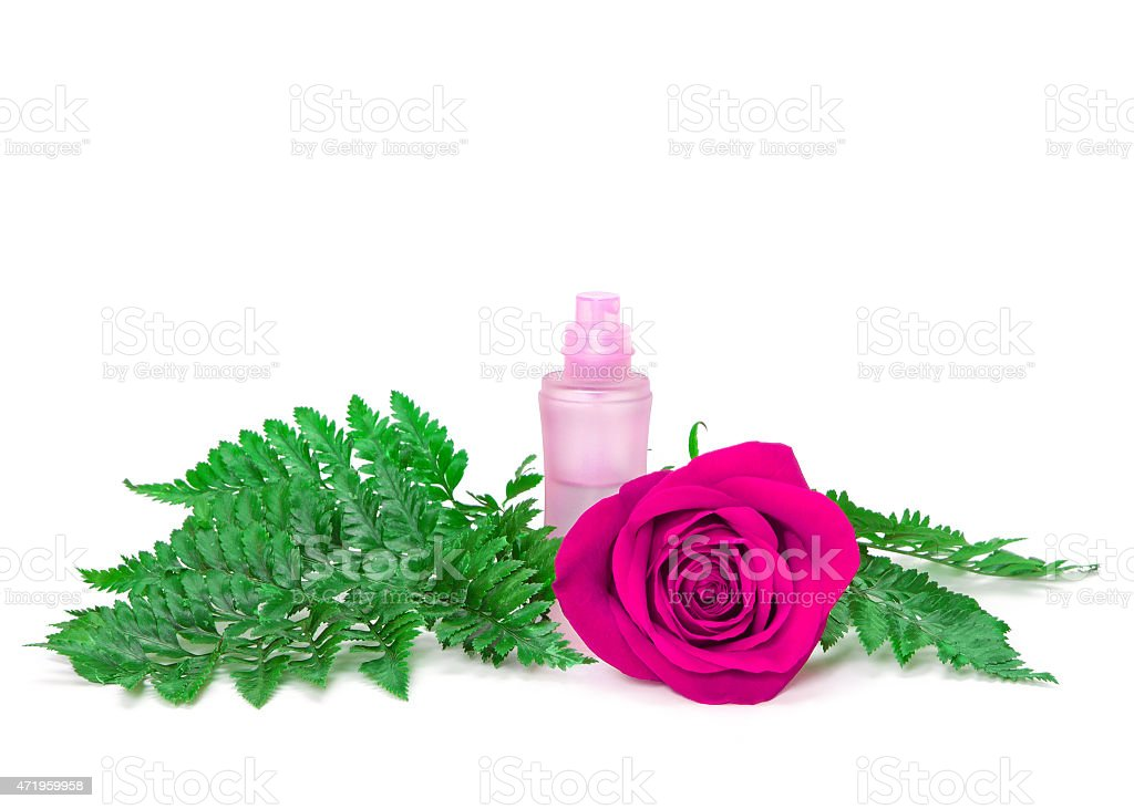 Perfume bottle with fresh purple rose and fern leaves stock photo