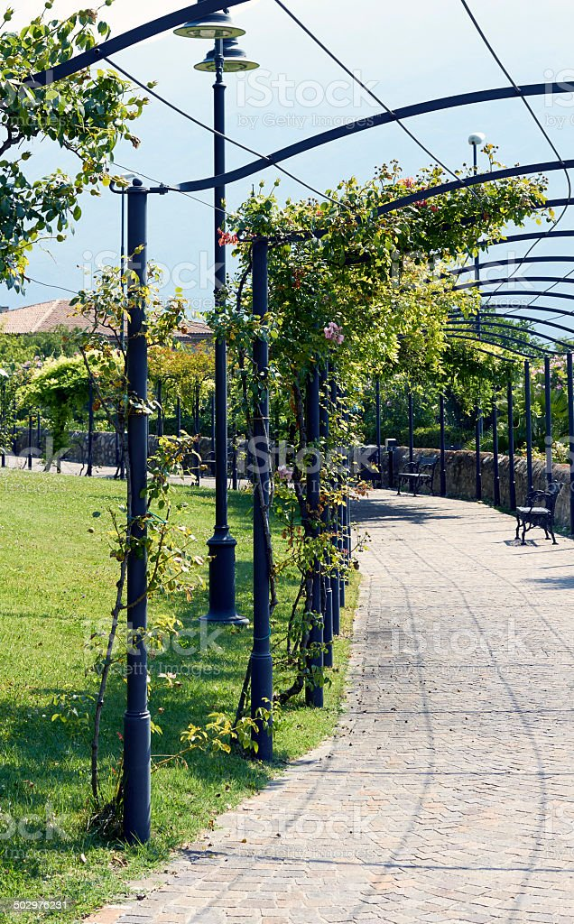 Pergola. Color Image royalty-free stock photo