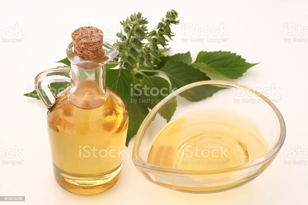 Perilla oil and perilla seeds stock photo