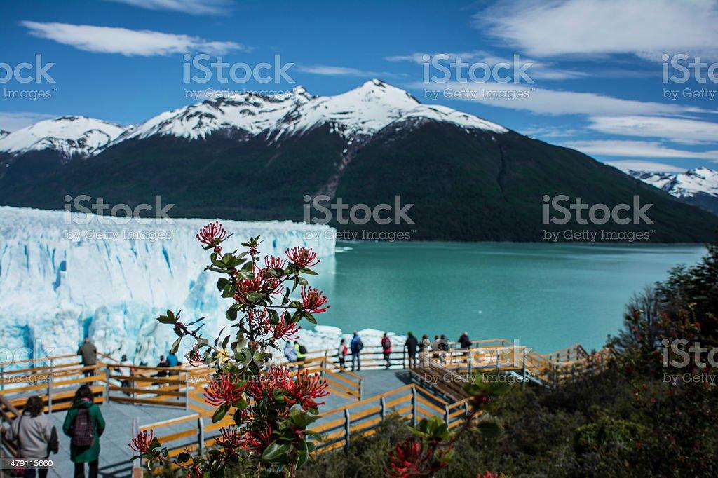 Perito Moreno Glacier, El Calafate, Argentina. stock photo