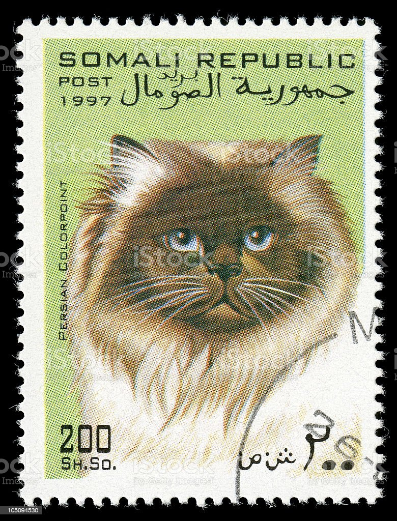 Persian Colorpoint Cat Stamp of Somali Republic stock photo