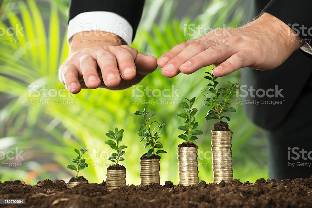 Person Hand Protecting Small Plant On Stacked Coins stock photo