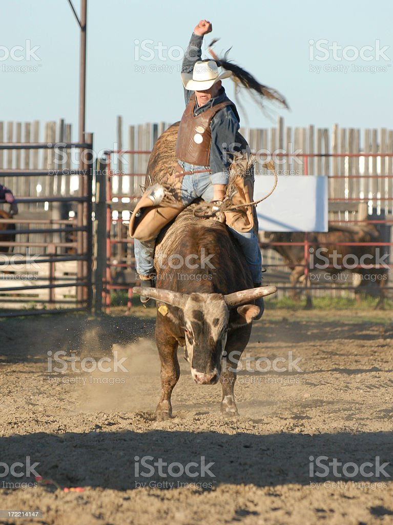 Person in cowboy hat riding bull in pen stock photo