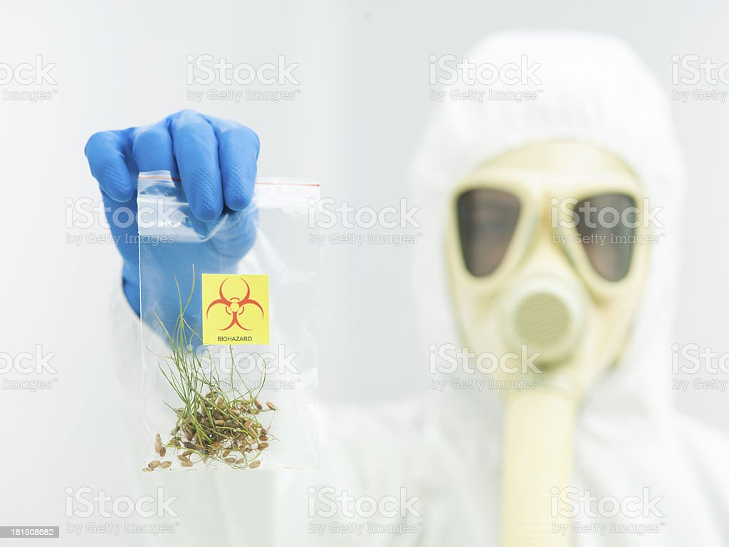 person in protective suit presenting crop sample royalty-free stock photo