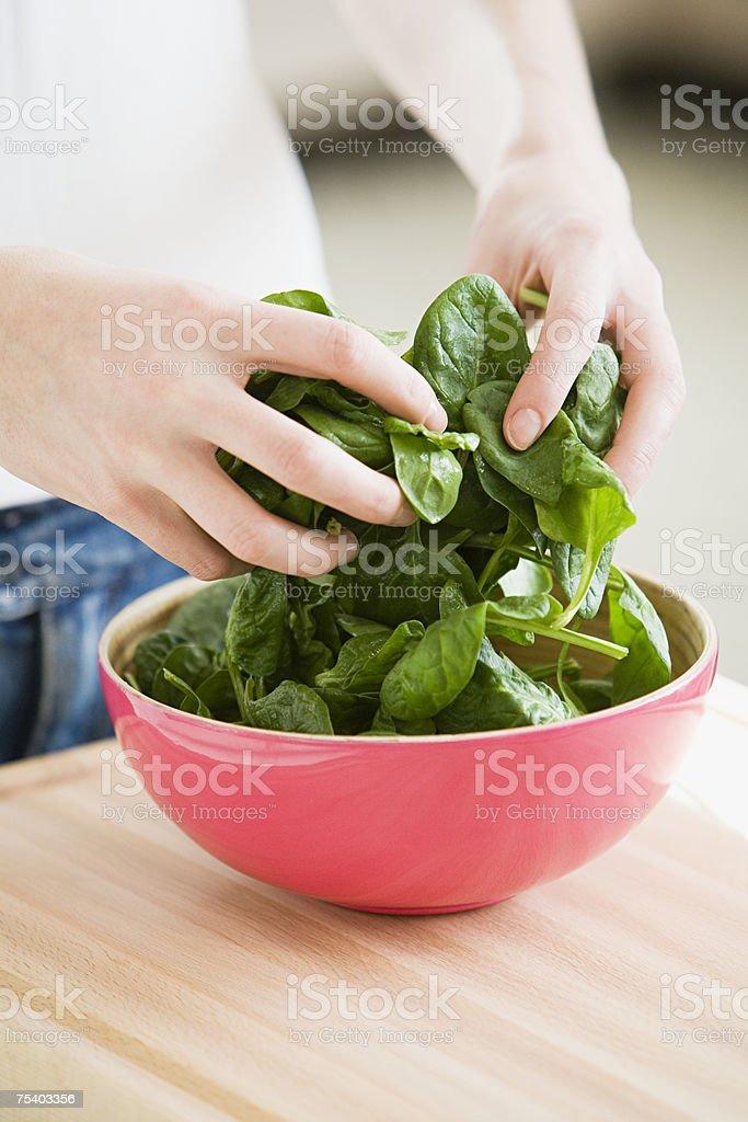 Person preparing spinach stock photo