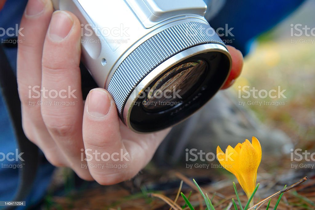 Person taking pictures royalty-free stock photo