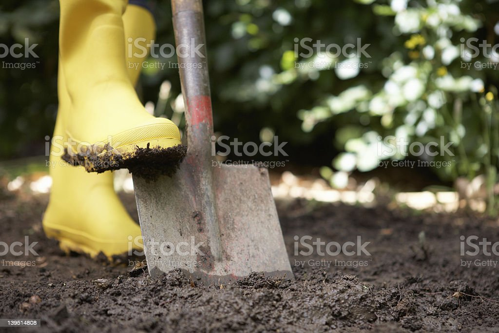 Person using yellow boots and shovel in a garden stock photo
