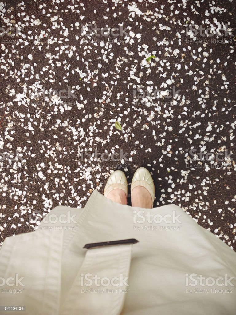 Personal point of view of ground with petals stock photo