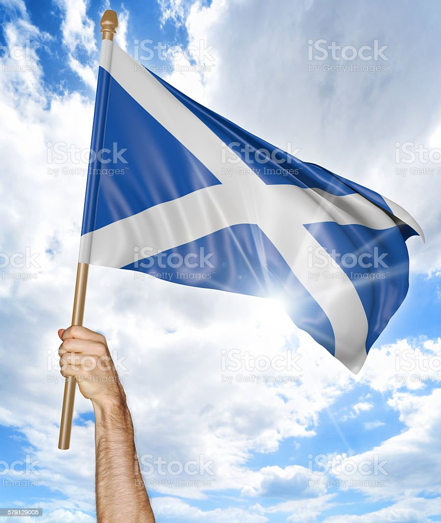 Person's hand holding the Scottish national flag and waving it stock photo