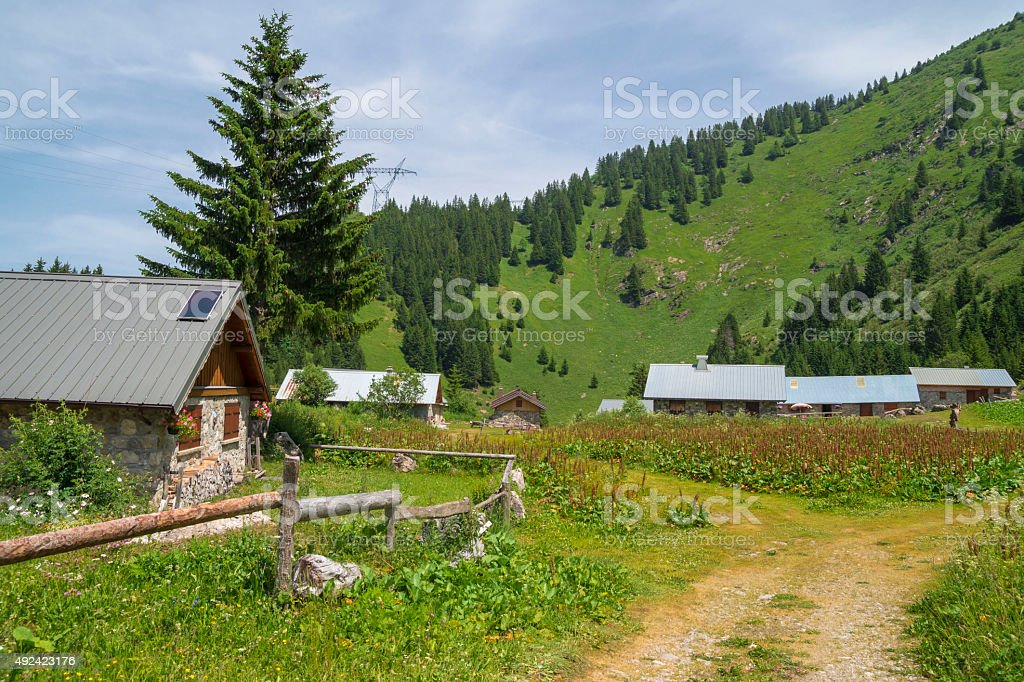 Pertuis - stones cottages at 1649 m ,french Alps stock photo