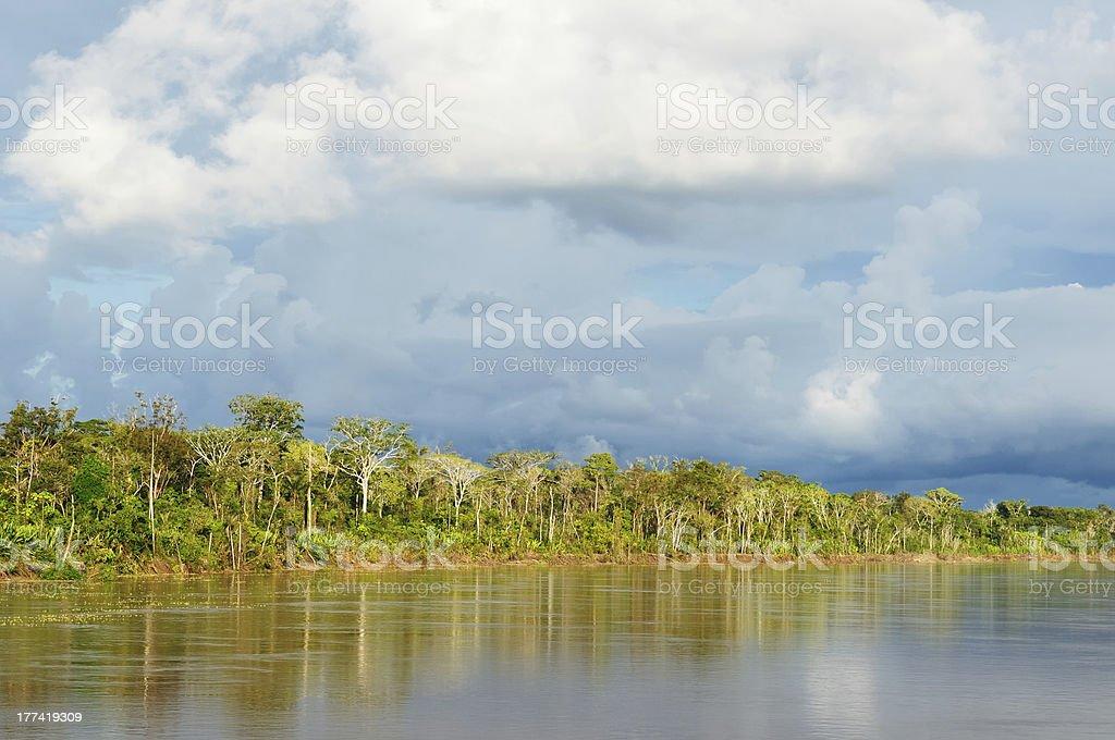 Peruvian Amazonas, Amazon river landscape royalty-free stock photo