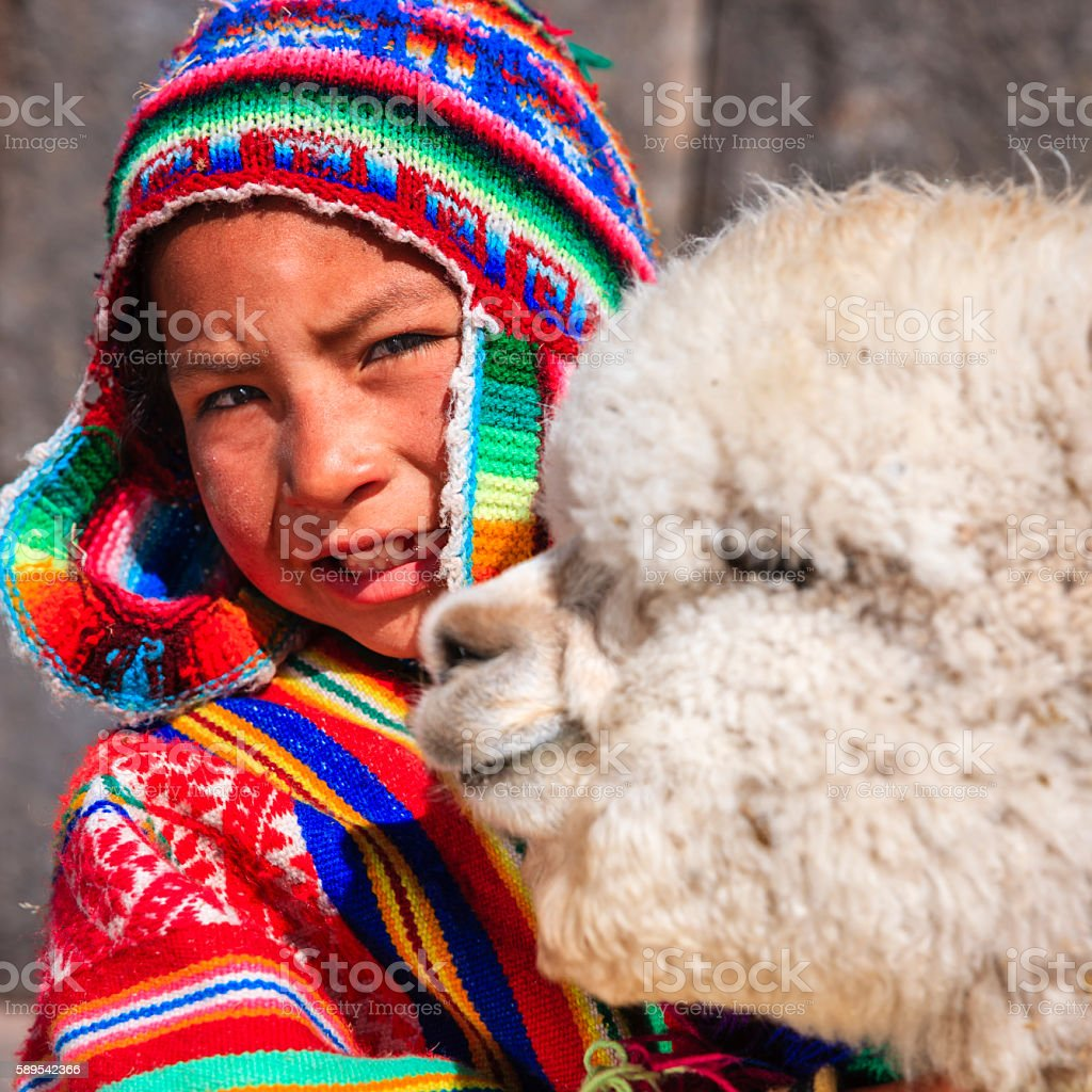 Peruvian little boy with llama near Cuzco stock photo