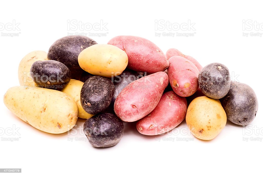 Peruvian Potatoes royalty-free stock photo