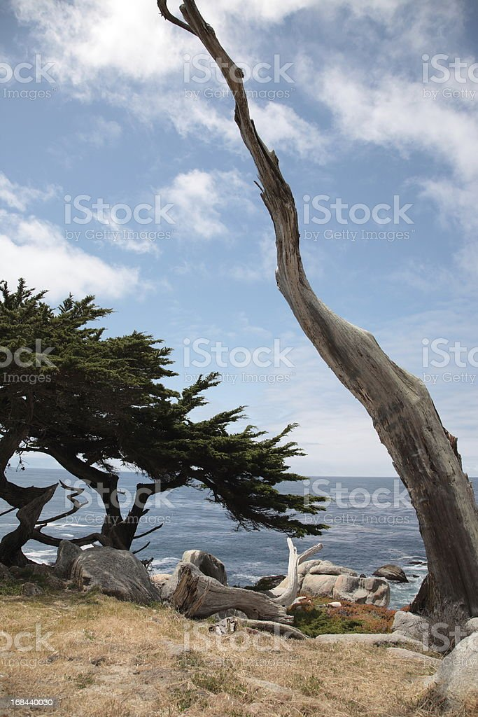 Pescadero Point at 17 Mile Drive in Big Sur California royalty-free stock photo