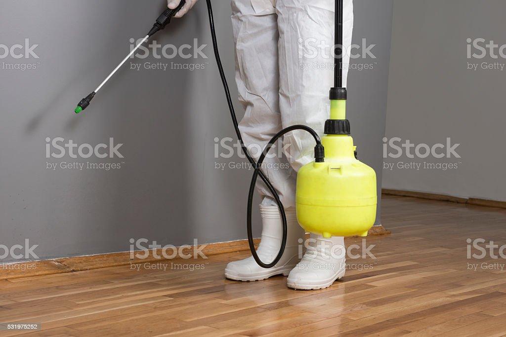 Pest Control Professional stock photo