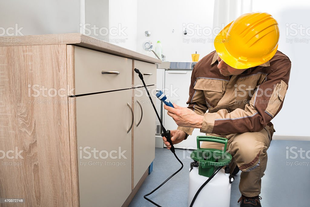 Pest Control Worker Spraying Pesticides stock photo